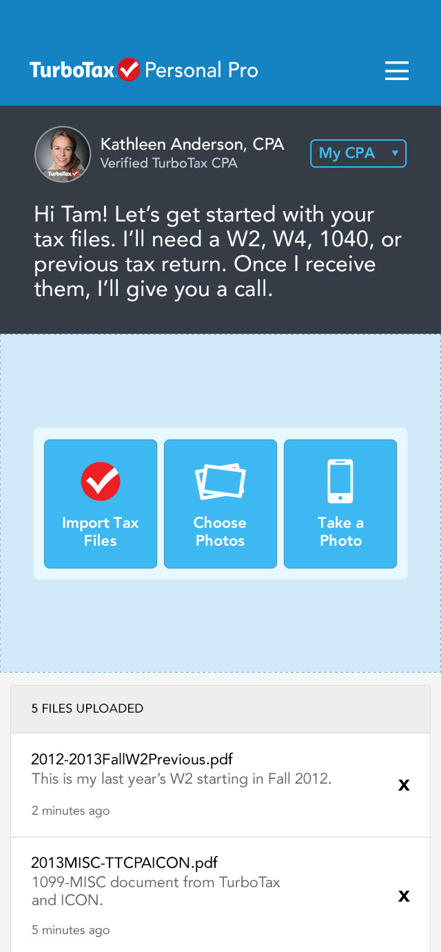 TAM CAI — Work Details: Intuit TurboTax Design Assets